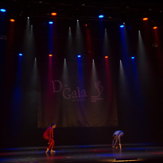 D-gala_2018-464.jpg