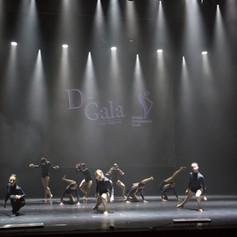 D-gala_2018-1392.jpg