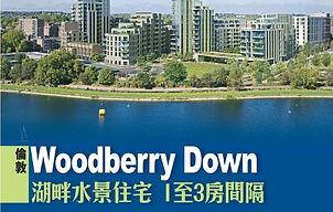 2019 - Sing Tao - Woodberry Down.JPG