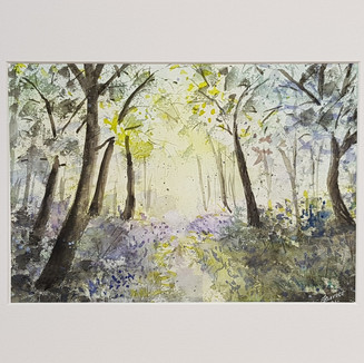Bluebell Forest Watercolour