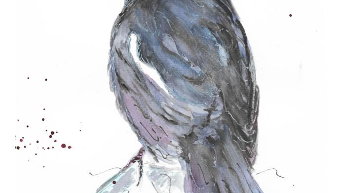 Magical Magpie