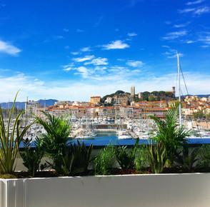 Les plantes, la mer et Cannes - MIPIM Cannes 2019