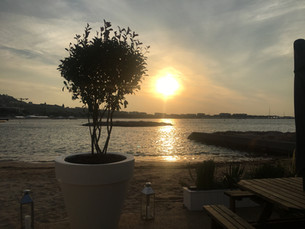 Nature on the beach- MIPCOM Cannes 2018