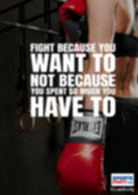 Boxer VV.jpg
