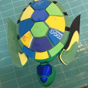 Tammy the Turtle
