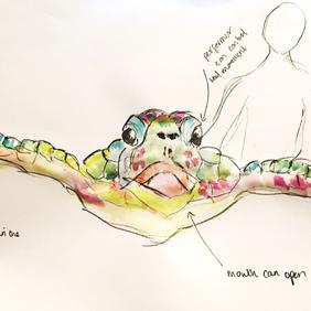 Turtle sketch 3.png