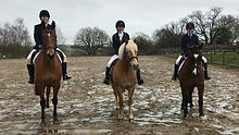 Horse riders competing in dressage