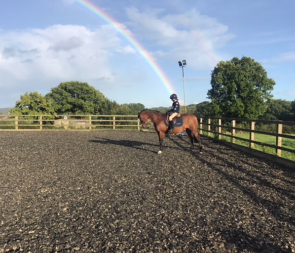 Horse in riding school with rainbow