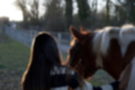 Horse and rider at Little Dunks Livery Yard