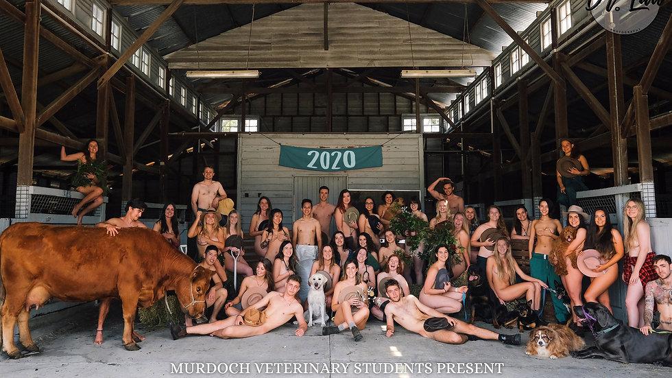 Unscrubbed Nude Calendar (Box of 10)