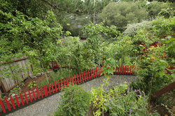 Multi-Level Garden Area