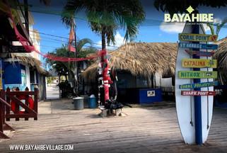 diving-bayahibe-coral-point4.jpg