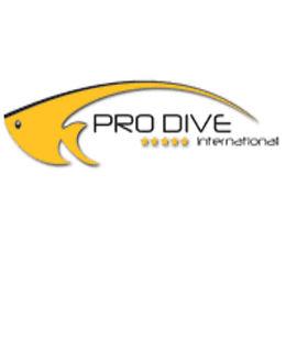 bayahibe-diving-pro-international.jpg
