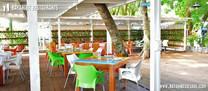 Bayahibe-restaurant-tipico3.jpg