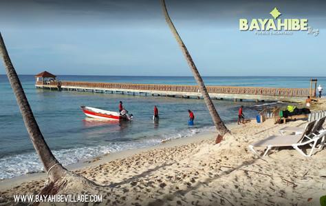 diving-bayahibe-pro-dive-international2.jpg