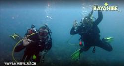 diving-bayahibe-go-dive9.jpg