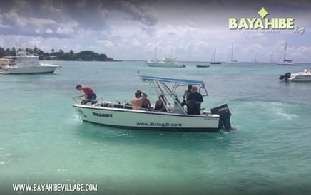 diving-bayahibe-sharkeys-dive4.jpg