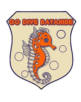 bayahibe-diving-go-dive.jpg