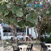 bayahibe-restaurants-casita-de-mary24.jpg