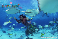 diving-bayahibe11.jpg