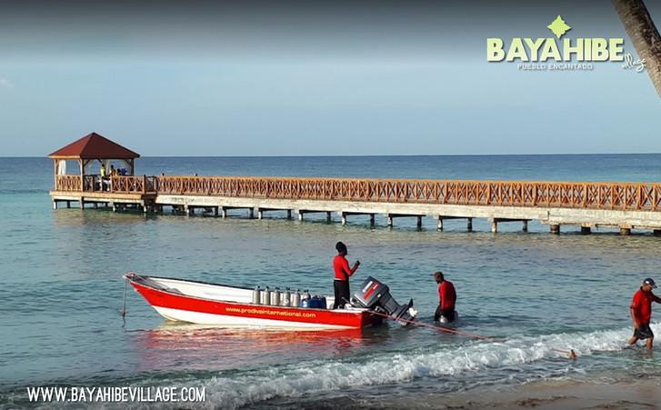 diving-bayahibe-pro-dive-international4.jpg