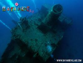 diving-bayahibe12.jpg
