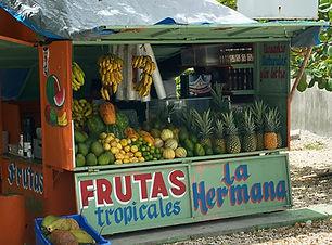 FRUTAS - LA HERMANA.jpg