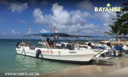 diving-bayahibe-go-dive1.jpg