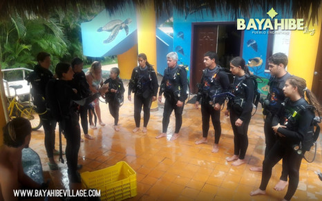diving-bayahibe-dressel-diving4.jpg