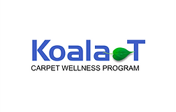 Carpet Cleaning Company Logo Design.png
