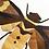 Thumbnail: Tosena Albata