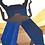 Thumbnail: Lucanus Cervus Blue
