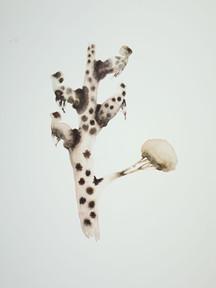 Leopard Dreams of Tree