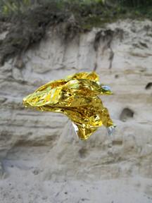 Golden Silver Reign