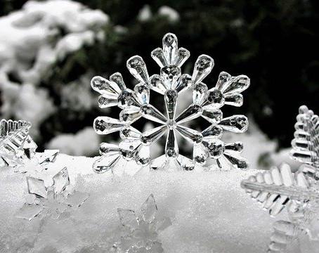 Dec 14th – Advent Day 16