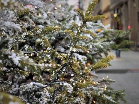 Dec 18th – Advent Day 20