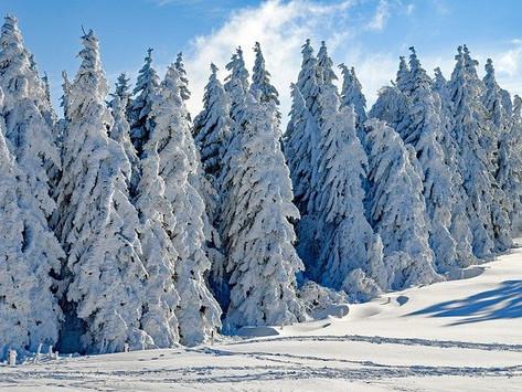 Dec 4th – Advent day 6