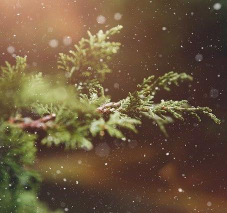 Dec 1st – Advent Day 3