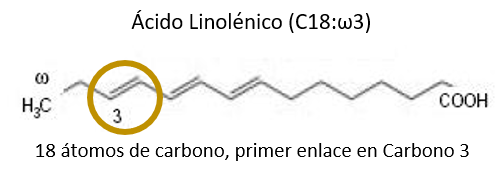 acido graso omega 3