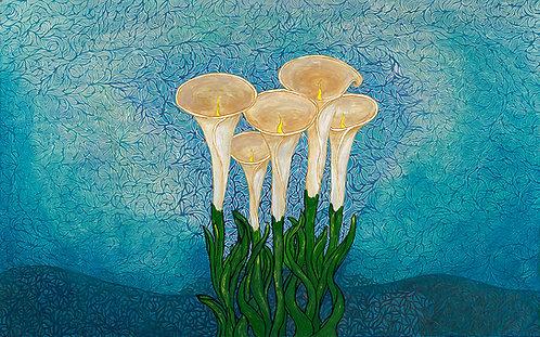 Five Calla Lilies