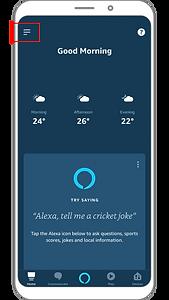 Amazon Alexa with Wozart - 1