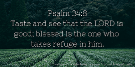 Psalm 34-8.png