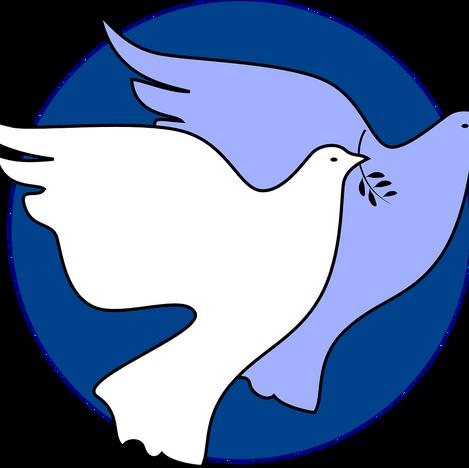 Social Responsibility Commission - 08 Nov 2020