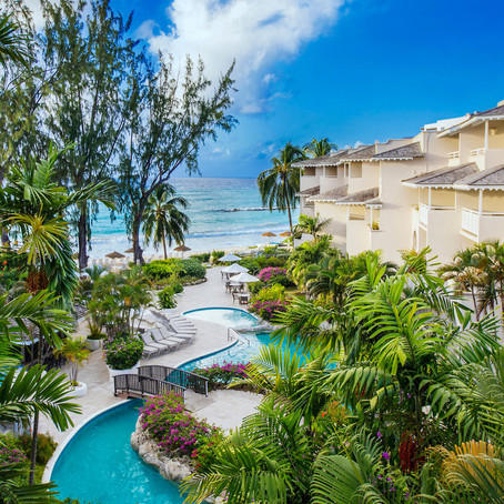 BOUGAINVILLEA BARBADOS 4*
