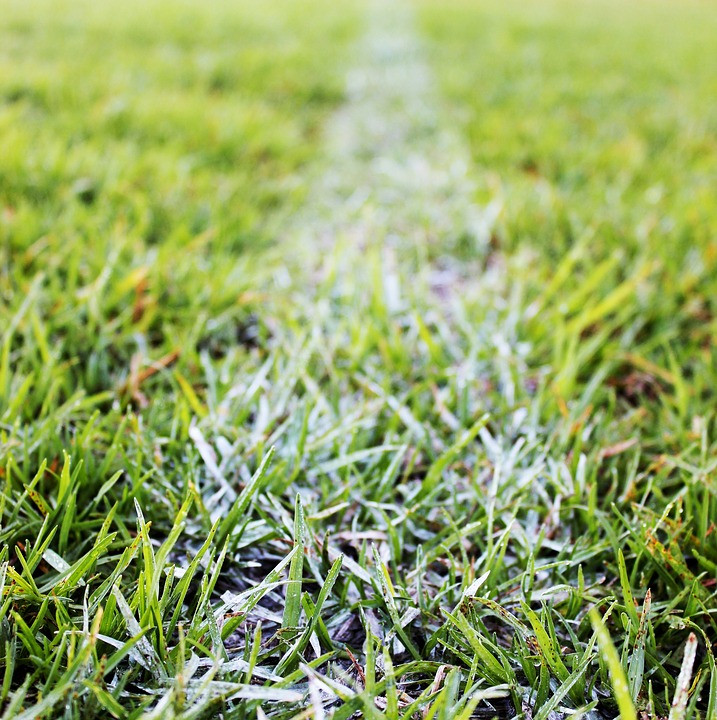 Grass Football Field