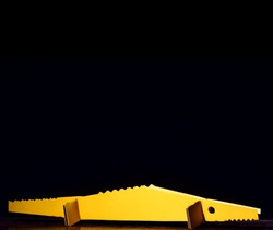 Jacaré do papo amarelo
