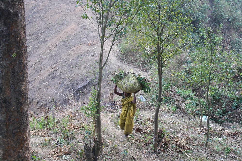 A worker in the Gazipur Tea Estate in Kulaura
