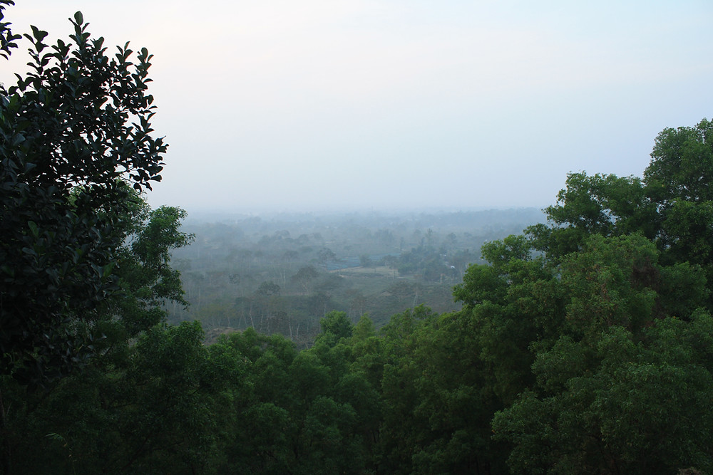 View from the bungalow atop Gazipur Tea Estate in Kulaura, one of the 92 tea estates in Moulvibazar