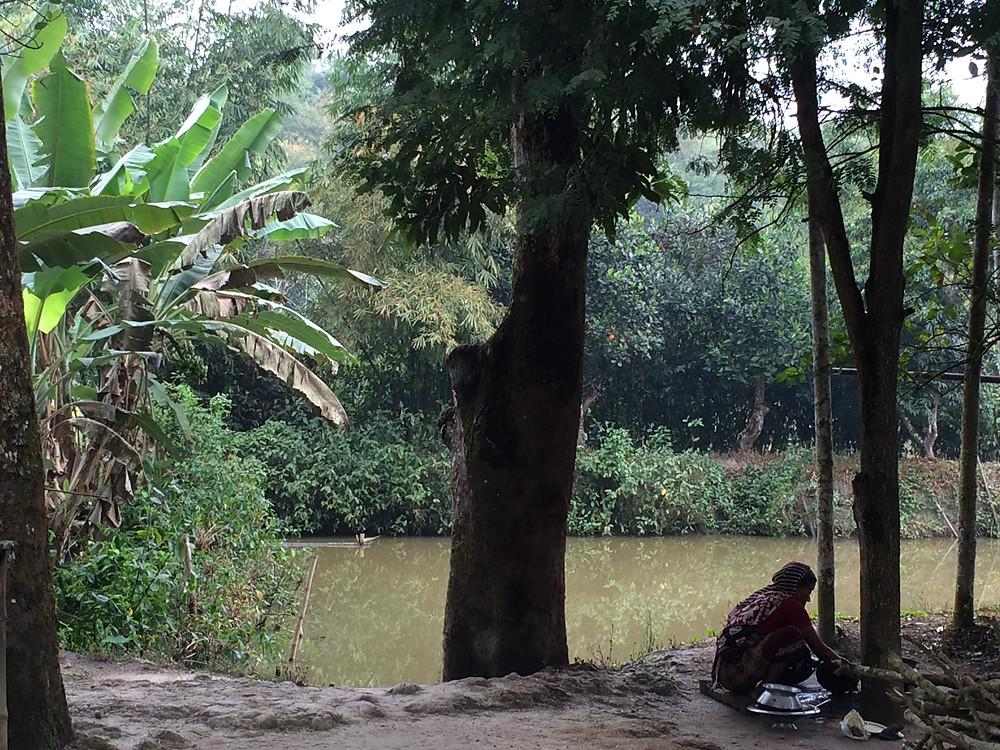 The pukur in Ammu's Nanar bari, Banugach