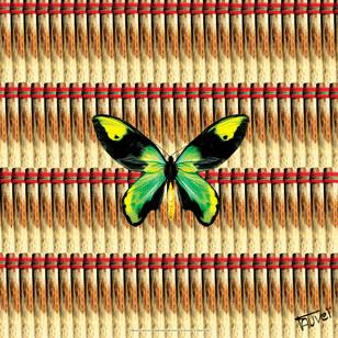 Image caricaturée - Ornithoptera Alexandrae - Photographie d'art.